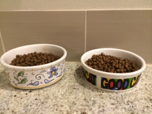 My cats' bowls, defiantly full. Little shitheads.